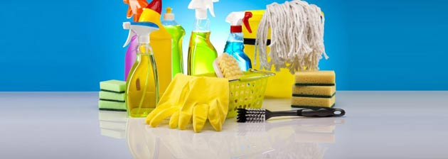 The Housekeeper You Deserve